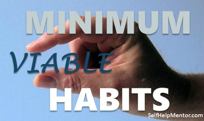 Minimum Viable Habits